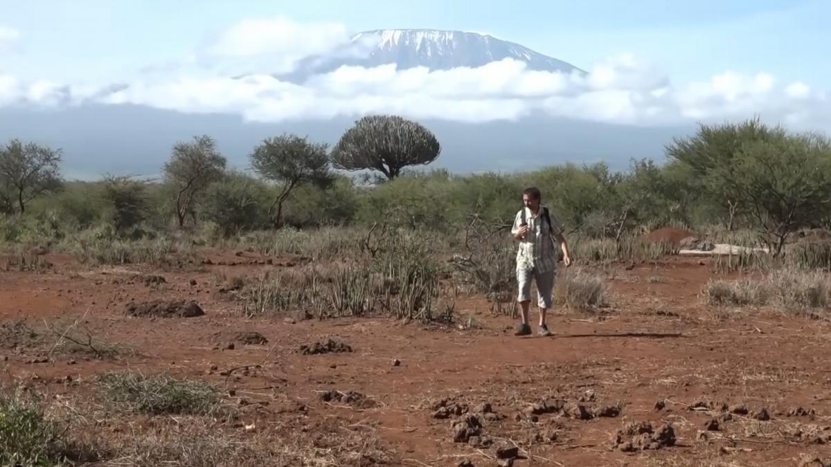 002-Pod-Kilimanjarem